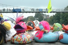 EiC recommends: Duck Race