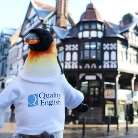 Look who made his way to Chester!  English in Chester has had a great start to 2019. We've been listening to our partners and the market and have lots of great news to share! First and foremost, we are now members of @qualityenglish - More exciting news to come! #englishinchester #eic #qualityenglish #qe  #internationalbusiness #cooperation #esl #efl
